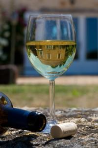 wijn glas met huis